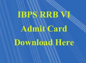Ibps rrbVI, admit card, download, bank, bharti, job