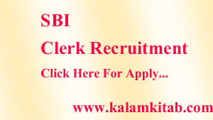 SBI Clerk Recruitment, भारतीय स्टेट बैंक, SBI, क्लर्क भर्ती, ibps, bank job, sbi job india, sbi jobs